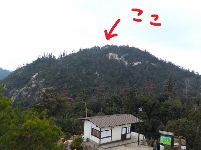 2013-03-30_11848.JPG