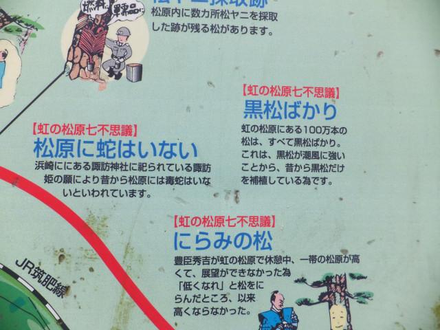 2013-07-15_13437.JPG