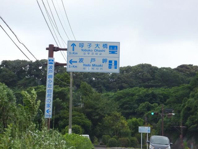 2013-07-15_13560.JPG