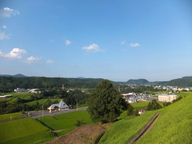 2013-09-10_14186.JPG