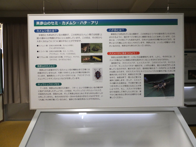 DSCF5691.JPG