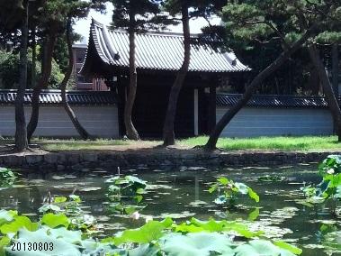 20130803 京都相国寺 蓮池