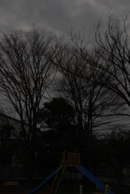 向山東公園 寒い朝