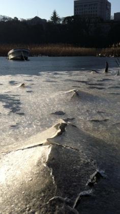 豊川 凍る