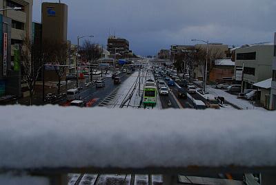 2016年1月20日 雪