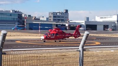 東京ヘリポートの総務省消防庁ヘリコプターおおたかの画像