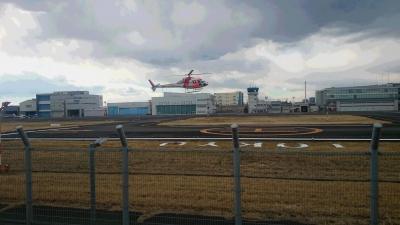 東京ヘリポートのヘリコプター画像