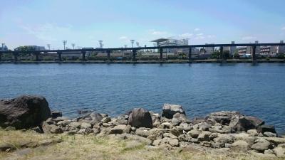 品川区大井中央海浜公園の海釣り場の画像