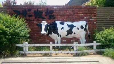 千葉県君津市マザー牧場の画像