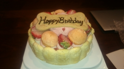 銀座にあるMUKUで買った犬用の誕生日ケーキの画像