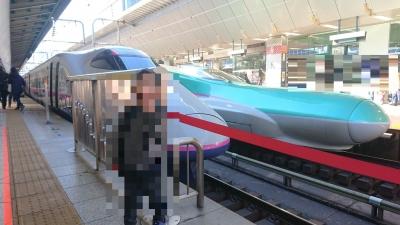 東京駅のホームから見るはやぶさ新幹線の画像