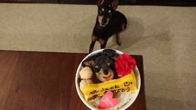 DogDinerの犬用ケーキの似顔絵付きの画像