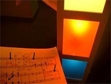赤青黄照明下でのローズレッド