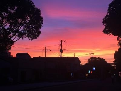 筥崎宮の夕方の風景