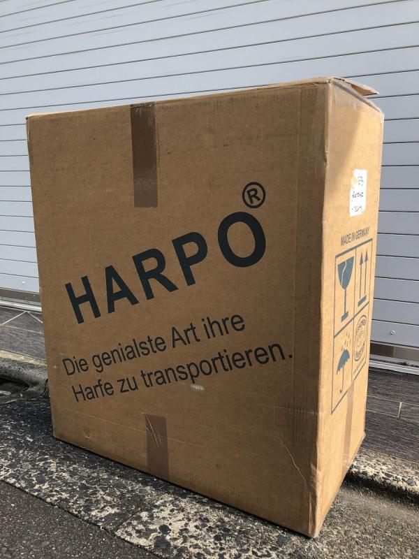HarpoInACardboardBox