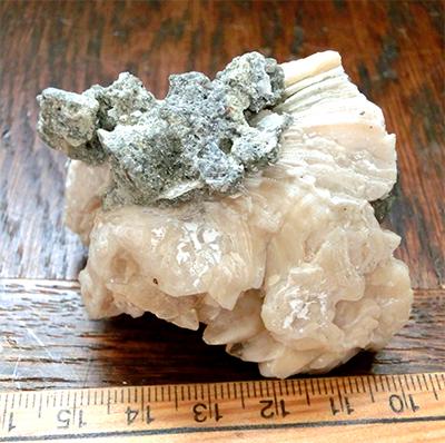 方解石化した二枚貝化石
