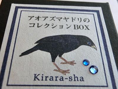 アオアズマヤドリの蒐集箱