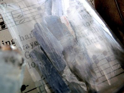 アオアズマヤドリのお年玉箱