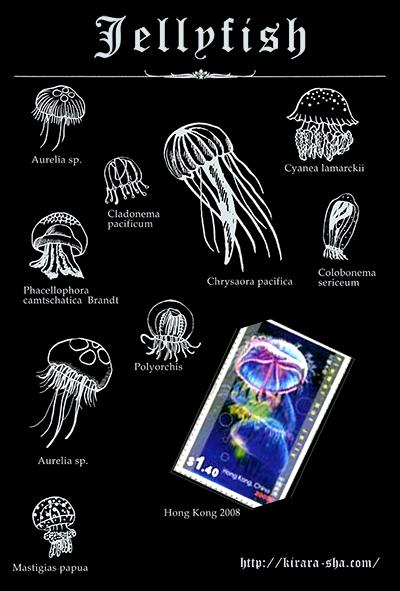 光る海月切手