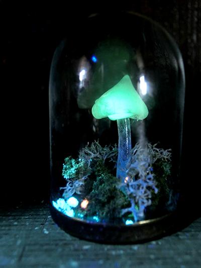 硝子ドーム標本/光るキノコ
