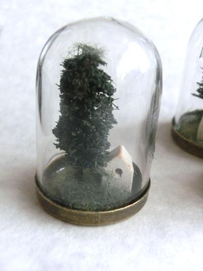 硝子ドーム標本/小さなおうち