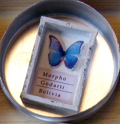 ミニチュア標本箱とインテル/鉱物レシピ102P