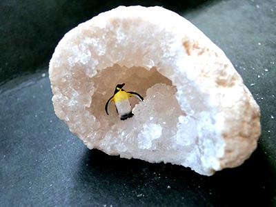 ペンギンジオード/きらら舎