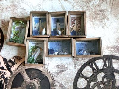 スライド蓋標本箱標本/きらら舎