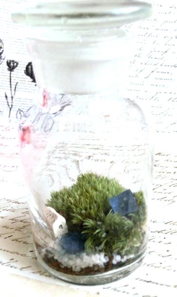 箱庭標本壜キット/きらら舎