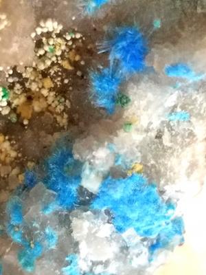 青針銅鉱/きらら舎