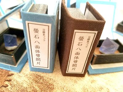 豆標本ブック/きらら舎