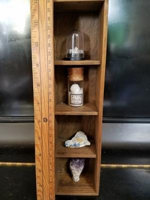 KentStudio標本棚フルコンプ/きらら舎