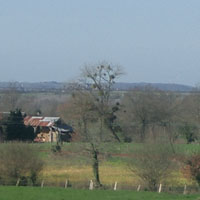 フランスの田園で見た「やどり木」