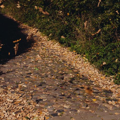 roadcobble