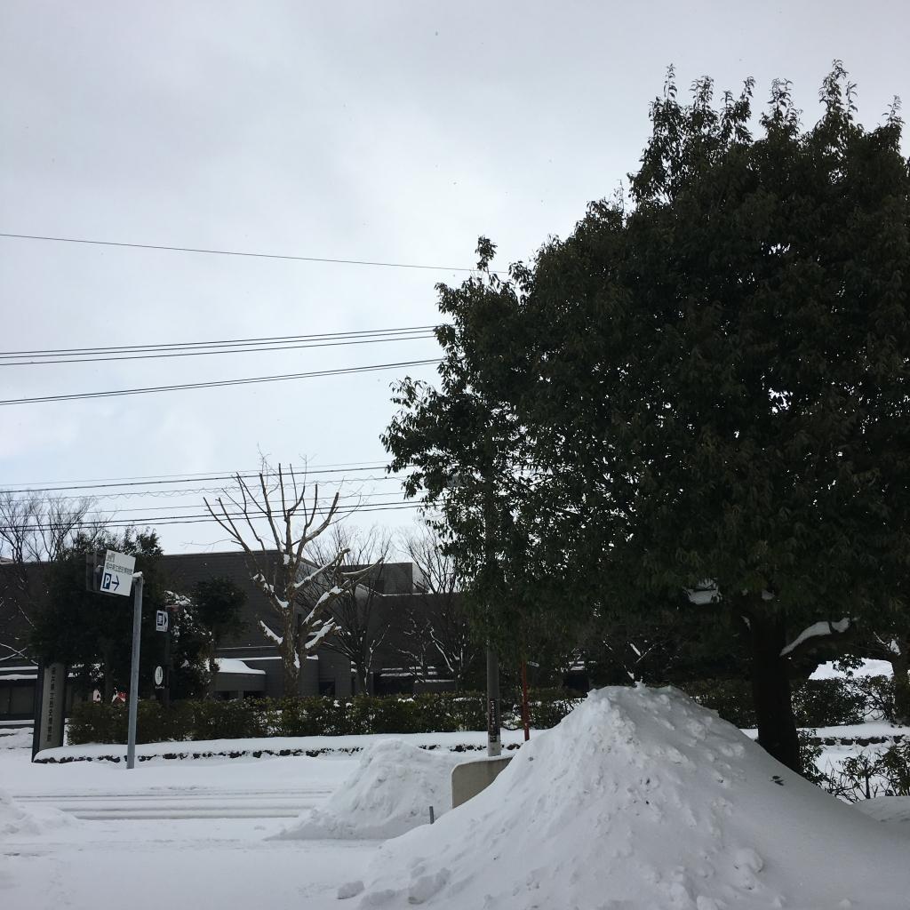 20180127大雪