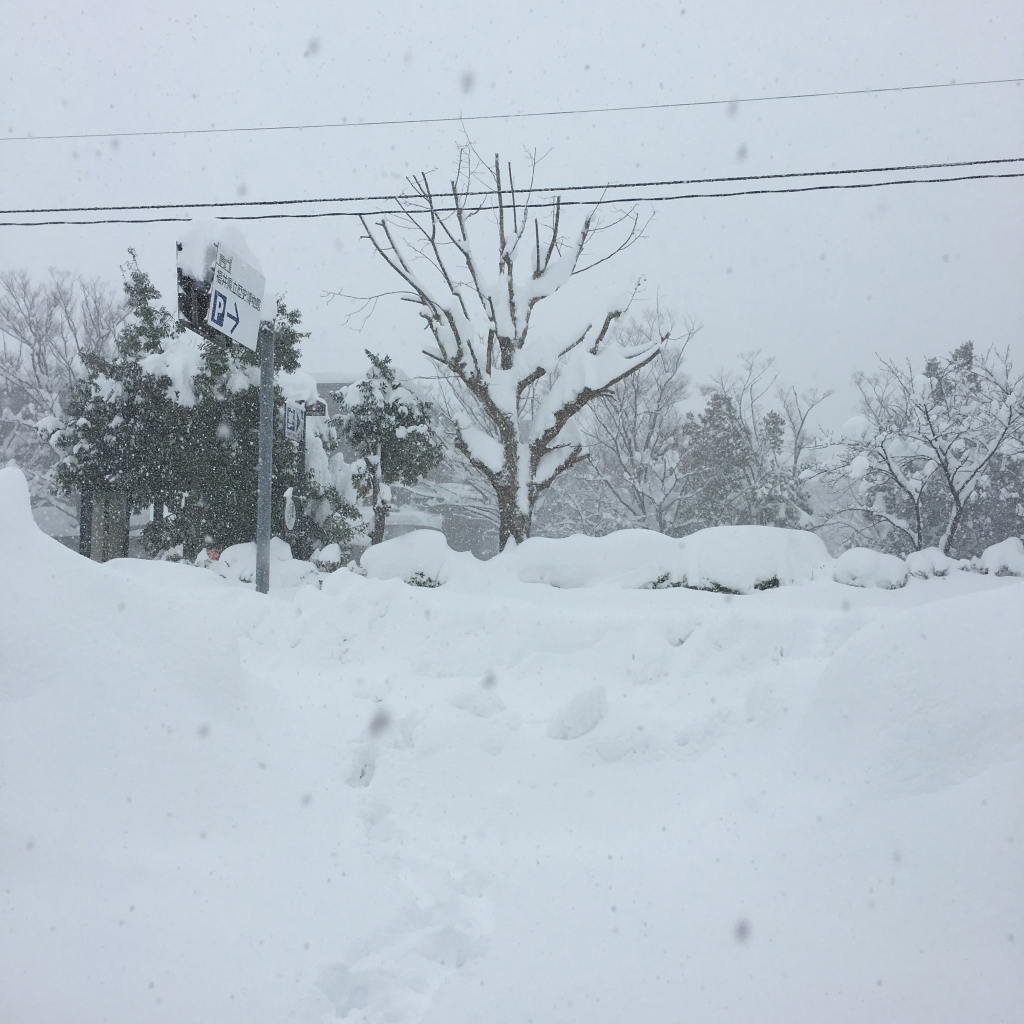 20180207豪雪