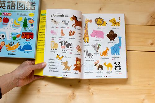 動物のイラストページ