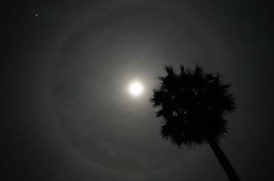 空にはこんな月の輪が。