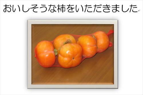 2_R.JPG