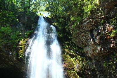 落差40mの名瀑。