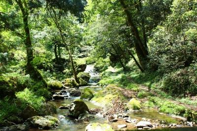 小川のせせらぎが聞こえる山道。