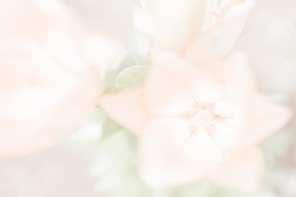 _DSC9733_edited-1.jpg