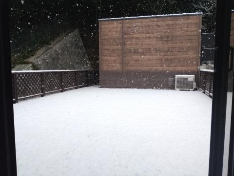 大雪 事務所裏