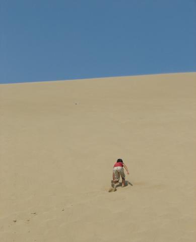 砂丘登り競争!完敗