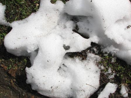 残雪ハートやや遠