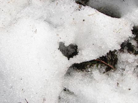 残雪ハートやや近
