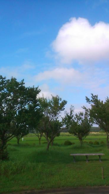 印旛沼付近公園