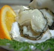 西海国立公園 九十九島 高島の牡蠣