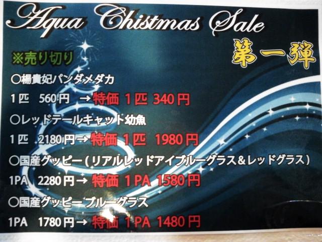 NCM_0953.JPG