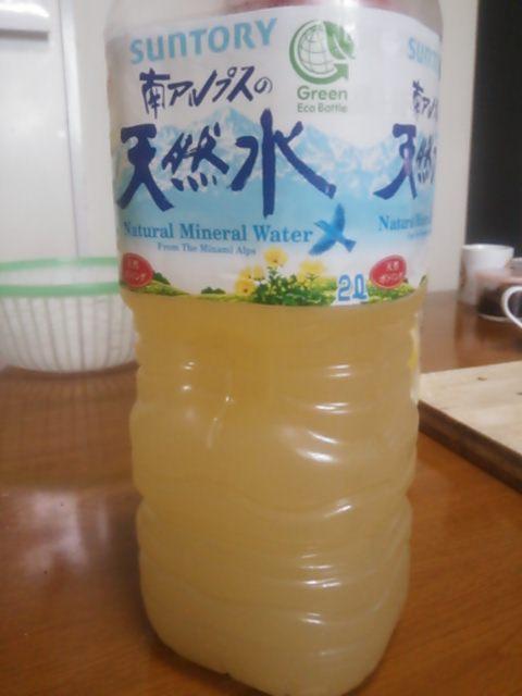 玄米乳酸菌